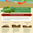 Grassland Facts: Why Grasslands Are Important Infographic