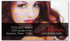 BCS-1031 - salon business card