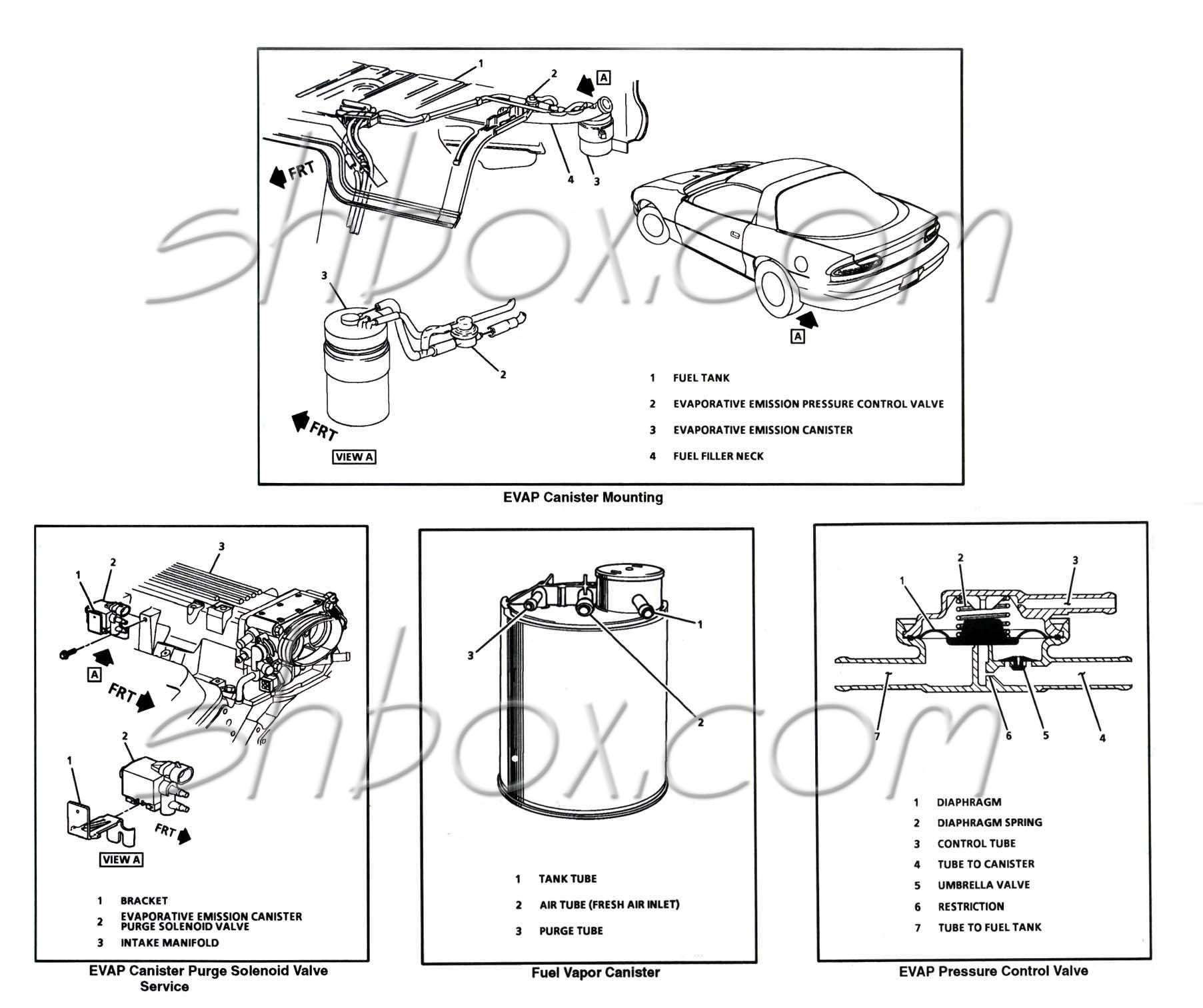 1997 EVAP Diagram Needed - LS1TECH - Camaro and Firebird ...