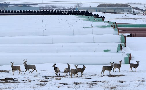 Keystone XL pipeline route would not harm environment: State Department - The U.S. State Department ...