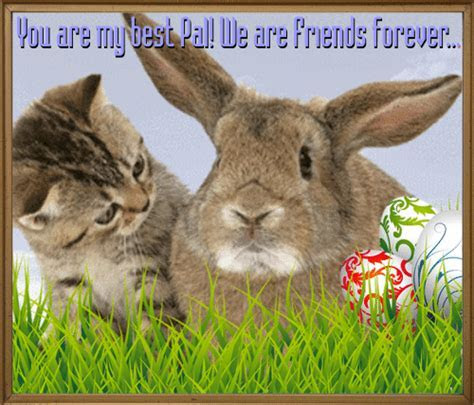 My Best Pal! Free Friends eCards, Greeting Cards   123