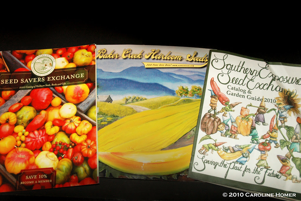 Spring seed catalogs