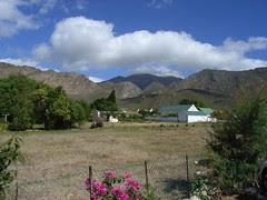 Sydafrika feb 2007 393
