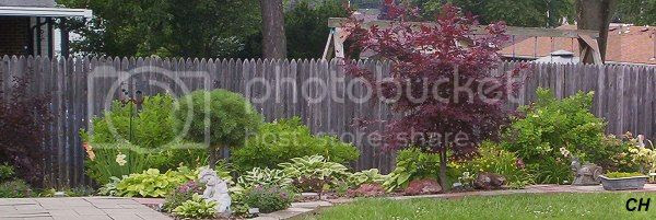 photo 714Overview.jpg