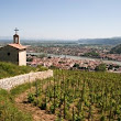 Rhône leads for fine wine recommendations