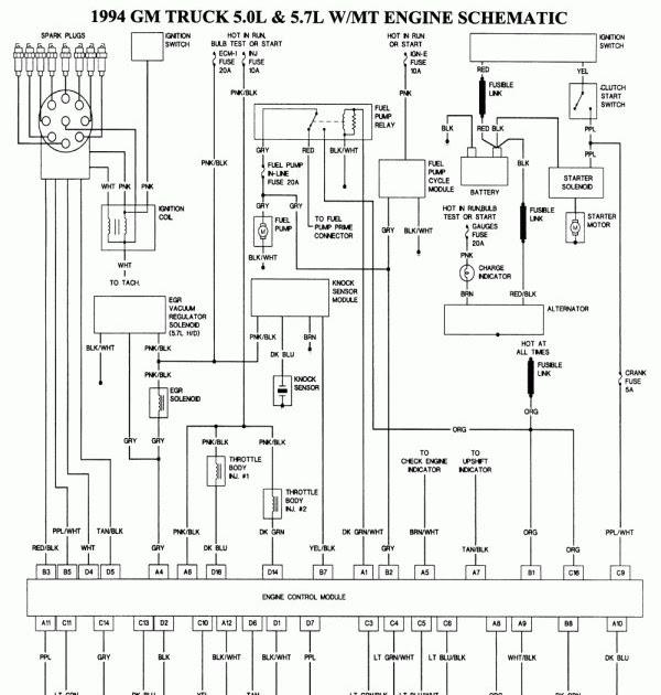 2002 Ford Explorer Radio Wiring Diagram Free Picture ...