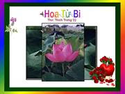 Hoa Tu Bi_Flowers of Compassion _Thich Trung Sy