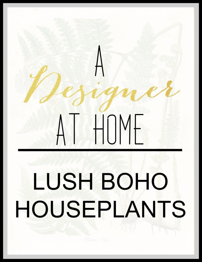 A designer at home loves lush house plants, get inspired and get ideas