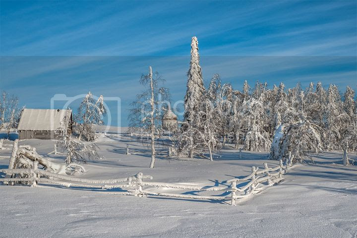photo Vladimir-Chuprikov-1_zps7995f3c5.jpg