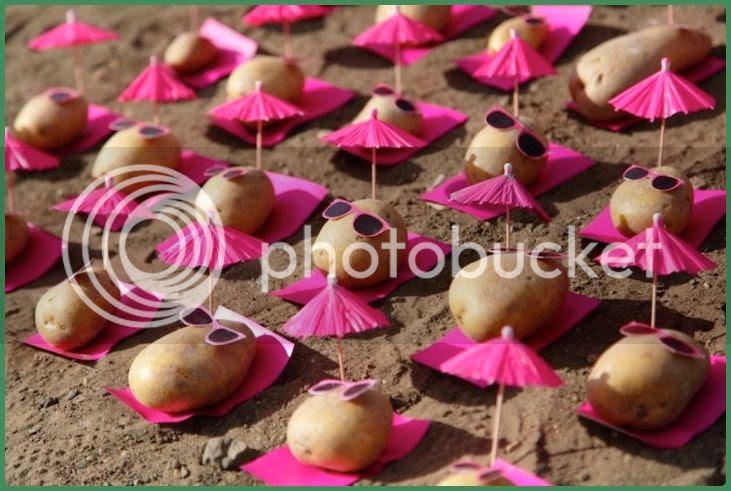 potato-food-art-01