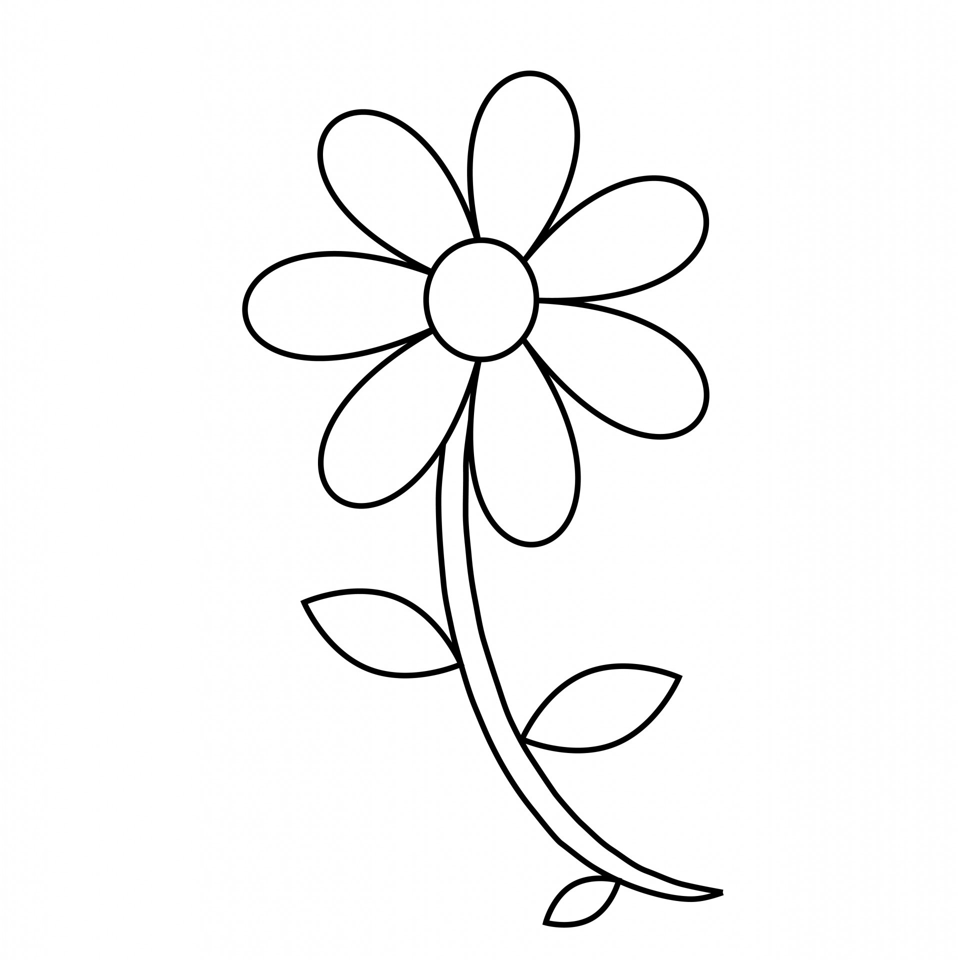 Free Black And White Flower Outline Download Free Clip Art Free Clip Art On Clipart Library