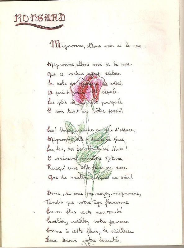 Mignonne Allons Voir Si La Rose Analyse : mignonne, allons, analyse, Mignonne, Allons, Commentaire, Images