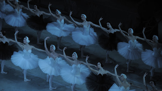 A Rare Bird: After 120 Years, Audiences Still Flock To 'Swan Lake'