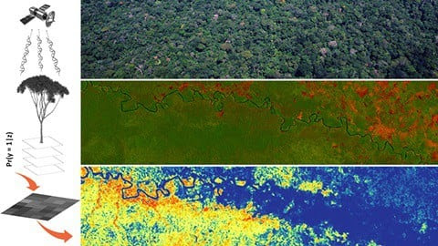 Mapping Tree Species in Amazonia Using Satellite Imagery and Machine Learning