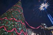 Antara Pohon Natal Asli dan Plastik, Mana yang Lebih Baik?