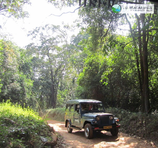 Image: jeep safari to the dudhsagar fall - Dudhsagar Falls | Tours Plan ...