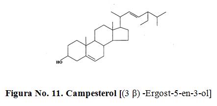 Campesterol [(3 β) -Ergost-5-en-3-ol]