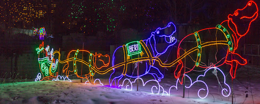 Zoo Lights 2015