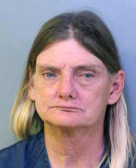Addled in the saddle? Woman charged with DUI on horseback