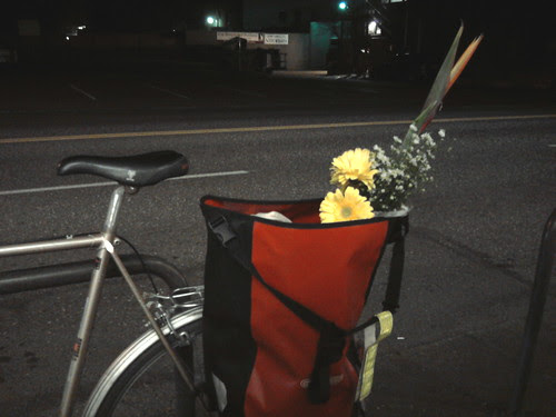 Spring night grocery run