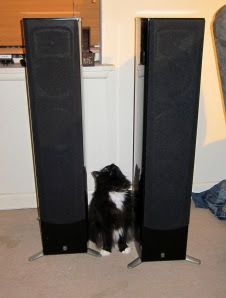 hail-speakers