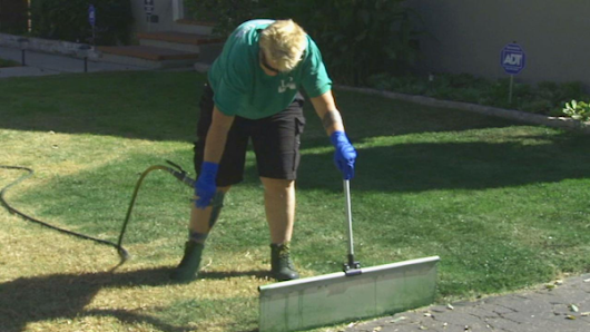 Drought face-lift: California paints lawns green