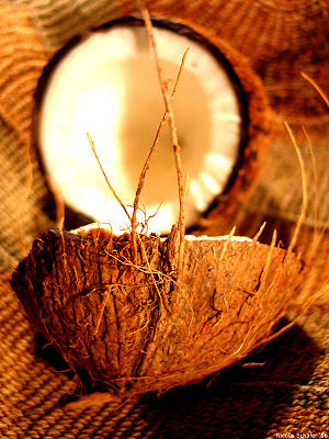 Coconut art 06