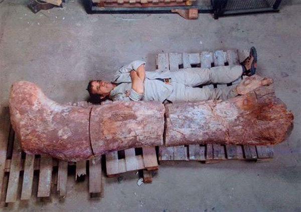 Homem deitado ao lado do osso de dinossauro