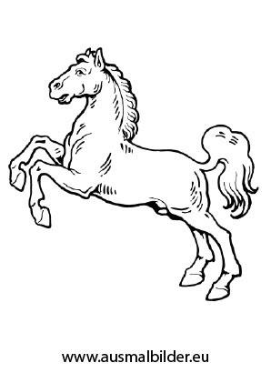Ausmalbilder Aufsteigendes Pferd - Pferde Malvorlagen