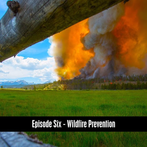 The D&B Show Episode Six - Wildfire Prevention by The D&B Supply Show
