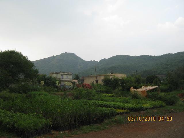 Shreeji Properties' Forest View Bungalows at Somatane PhataIMG_3160