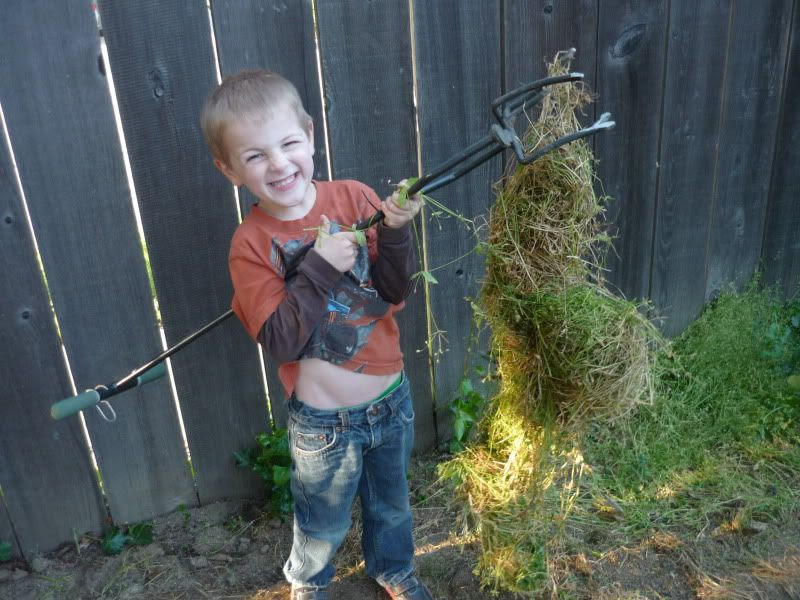 "James ""Making a Tornado"" or ""Nest"" Out of Weeds"