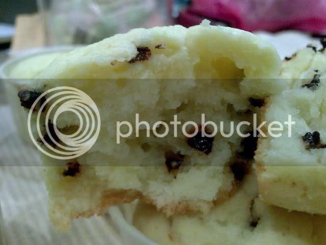 yoghurtcupcakes2