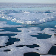 Arctic will be basically ice-free by summer 2050, NOAA study says