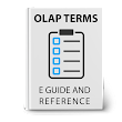 Download the eGuide to OLAP and Business Intelligence terms
