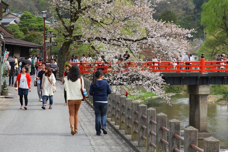 Takayama, Japan - April 29, 2012: Visitors enjoy cherry blossom on April 29, 2012 in Takayama, Japan. Takayama is among top 25 tourism destinations in Japan according to Japan-Guide.com.