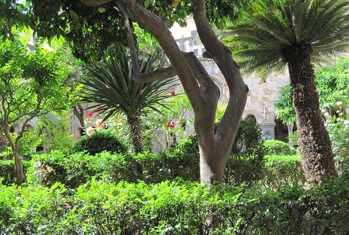 Dubrovnik, luostarin puutarha