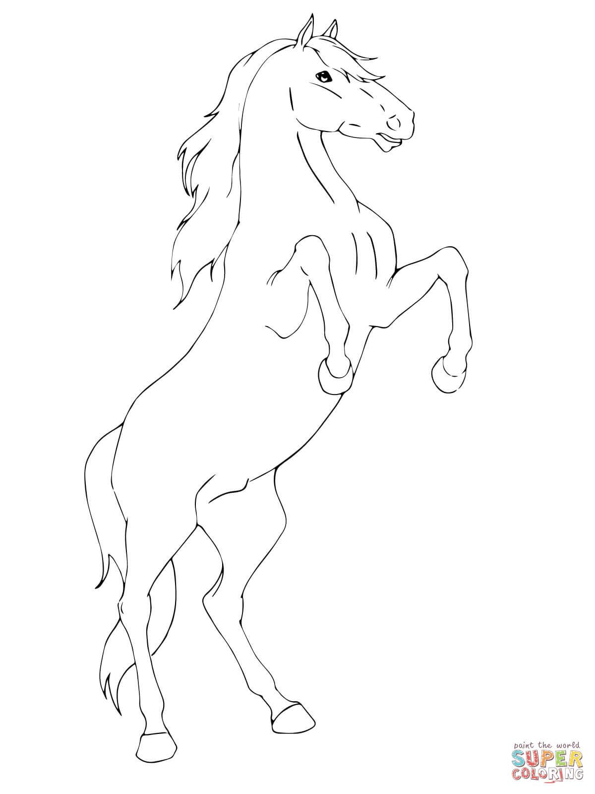 Kleurplaten Van Wilde Paarden.Charmante Springend Paard Kleurplaat Krijg Duizenden Kleurenfoto S