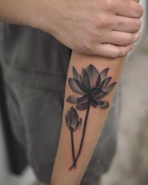 X Ray Lotus Flower Ecosia