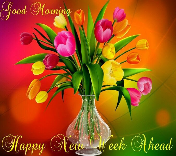 Good Morning Happy New Week Ahead Pictures Photos And Images For