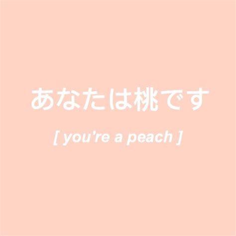 atfabxiety  peach aesthetic orange aesthetic youre