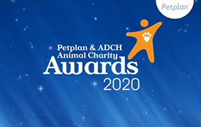 Petplan - Charity website