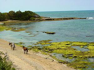 Shore at Puerto Plata - Dominican Republic