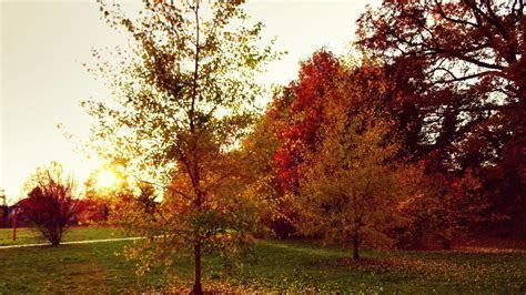 Herbst Natur Sonnenuntergang Hintergrundbild   1920x1080