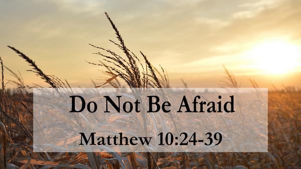 Hãy bước vào thế giới kỹ thuật số với tâm thế hy vọng và trở thành người loan báo Tin Mừng.