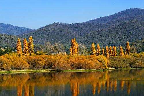 Mount Beauty, Victoria, Australia IMG_7991_Mount_Beauty
