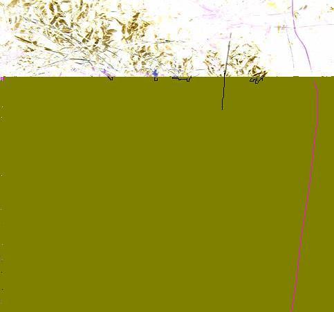billy bob beamer - untitledflower by jim leftwich