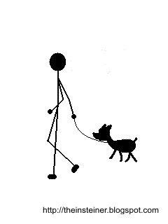 gambar  foto gambar kucing persia imut lucu banget