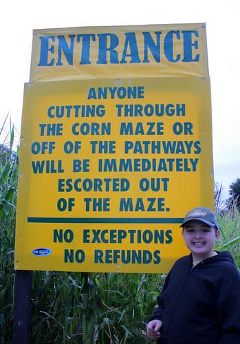 corn maze - entrance