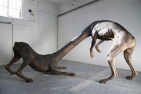 Top 5 bizarre mythological creatures!   Trendingtop5